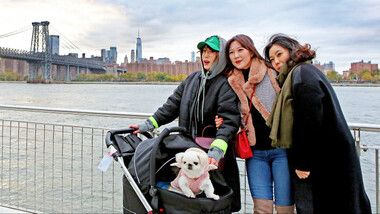 Pets GO! Doggy Trip Episode 4