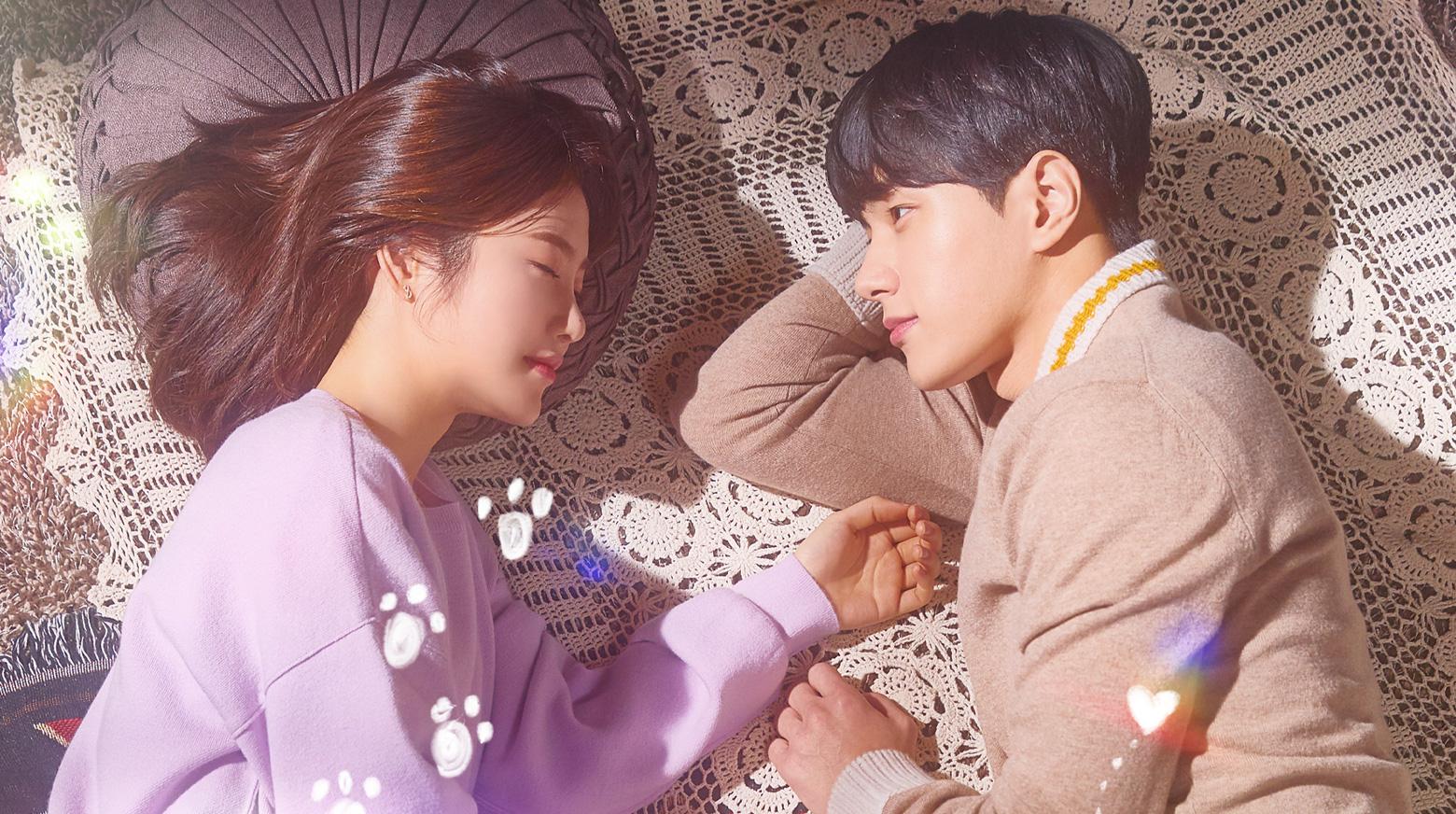 40 Questions Korean Drama - Meow. The Secret Boy