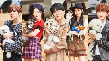 Campeonato de Agilidad Canina de las Estrellas Ídolos del 2020: Especial de Chuseok