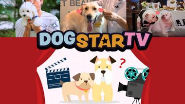 TV Estrela Canina