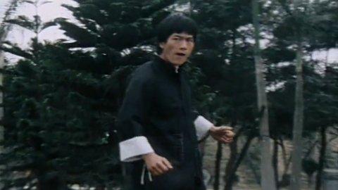 Bruce Lee Secret