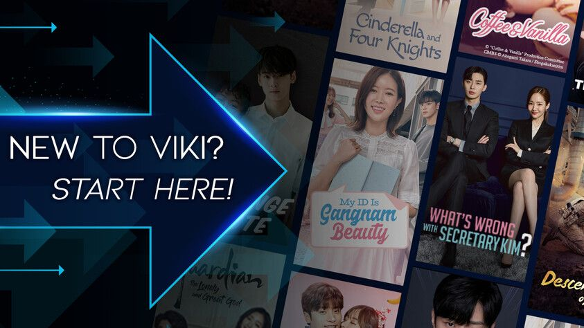 New to VIKI? Start here!